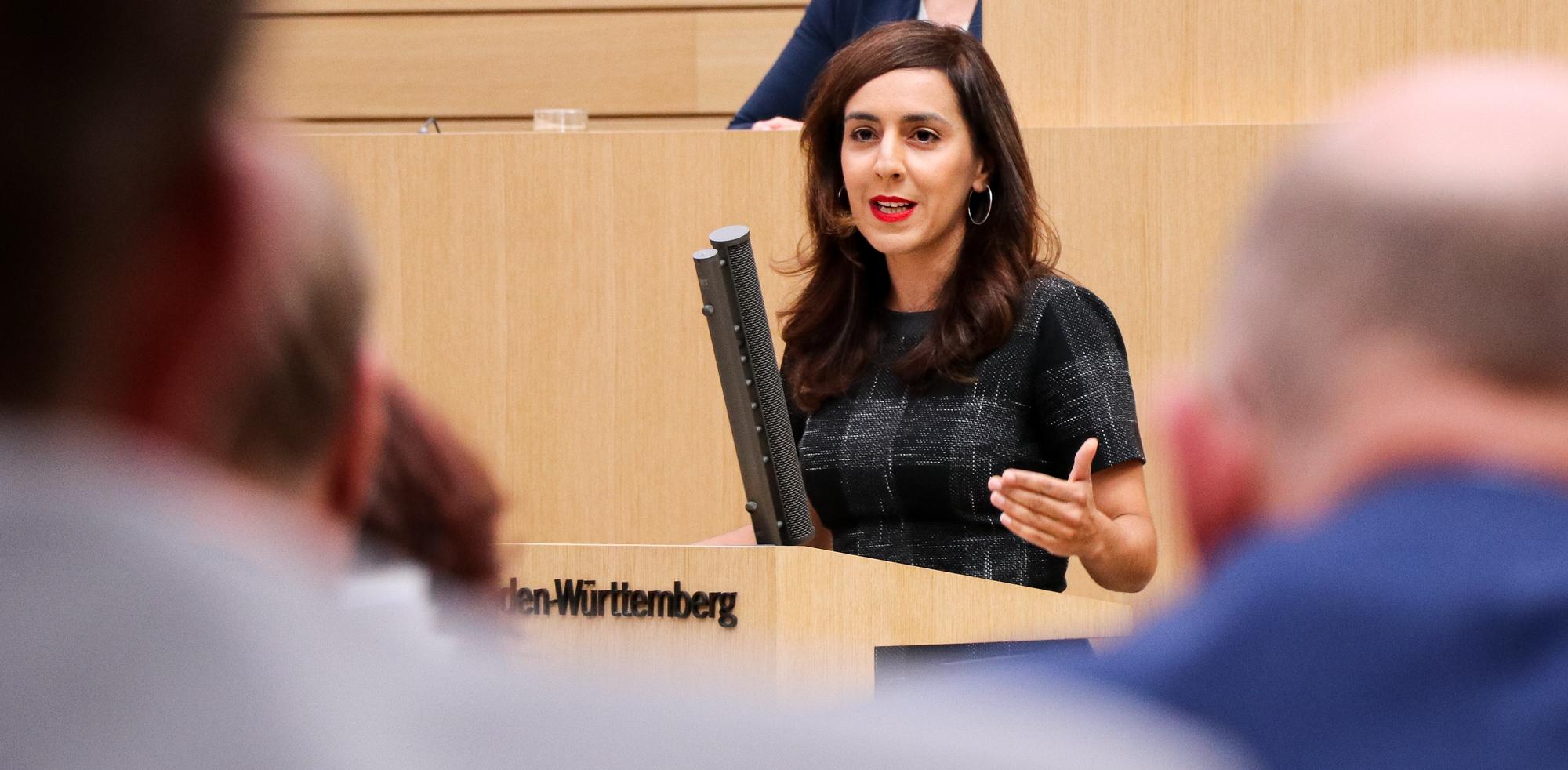 """Plenarrede zum grünen Antrag """"Beteiligungsportal Baden-Württemberg"""""""